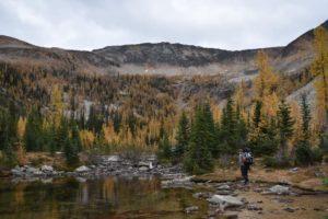 scenic view of autumn mountains in Washington State